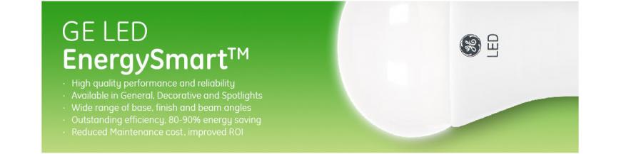 LED Energy Smart